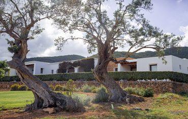 Casa Maca 2 Unique Ibiza